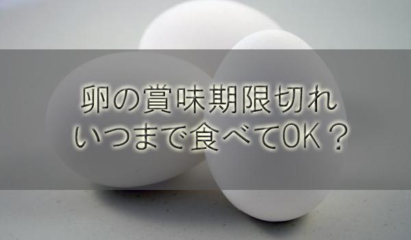 卵の賞味期限切れはいつまで食べてOK?ゆで卵や加熱(半熟)生卵は【1ヶ月/1週間/2週間/10日期間別調査】