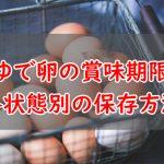 ゆで卵の賞味期限と保存方法・状態ごとに解説【冷蔵庫/常温/殻むいた・殻付き状態/味付け/冷凍】